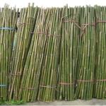 農用支架-豆竹